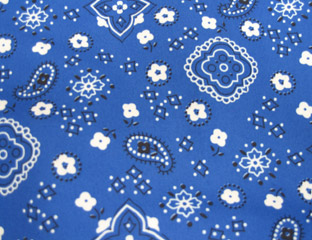 Bandana Blue