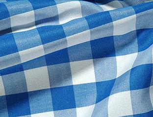 Check Blue/White
